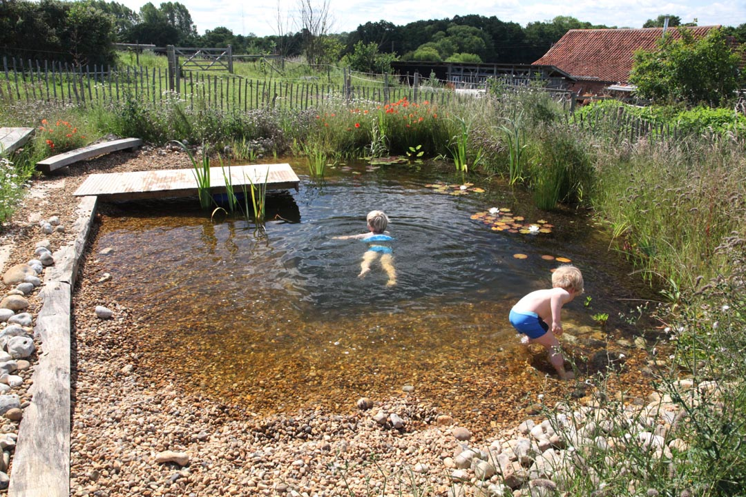 Organic swimming brining freshwater back into our lives for Small pond construction