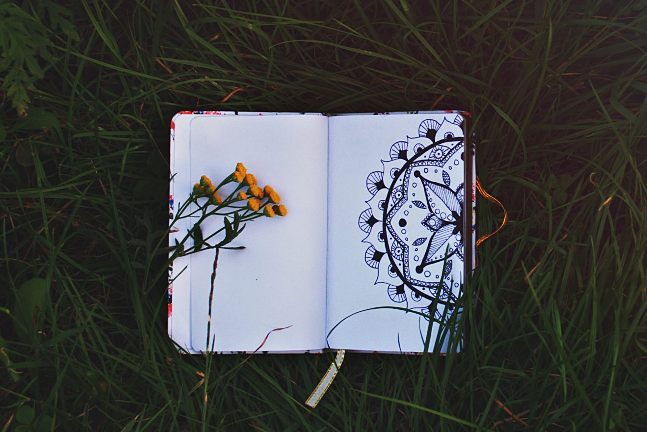 an image of a notebook on a grass floor with dirt on the side and flowers above it